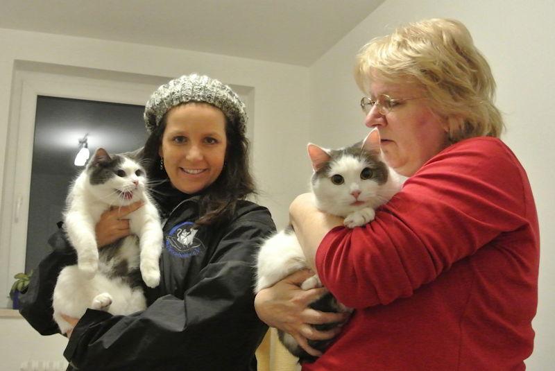 Nach fast drei Monaten endlich wieder daheim: Die beiden Katzen auf dem Arm von K. Said und G. Ascherl,  Foto: M. Limbacher