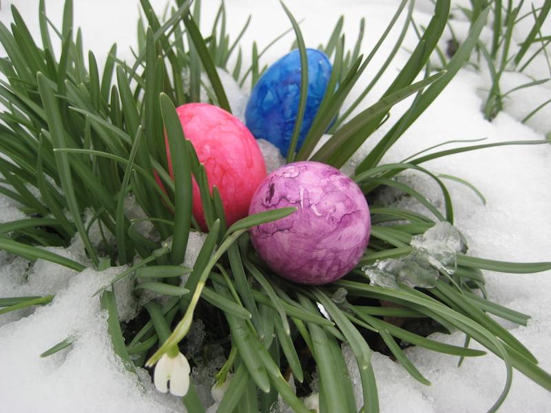 Weiße Ostern. Foto: M. Limbacher