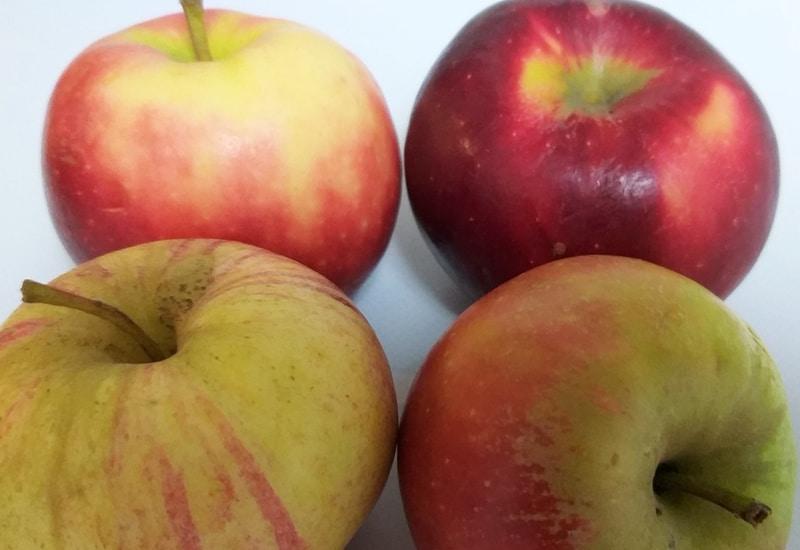Bio-Äpfel werden am 6. März am S-Bahnhof Puchheim verteilt.