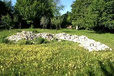 """Eidechsenbiotop in der Krautgartenanlage """"Puchheimer Wühlmäuse"""""""