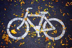 Zentrale Anlaufstelle für Fahrradbelange