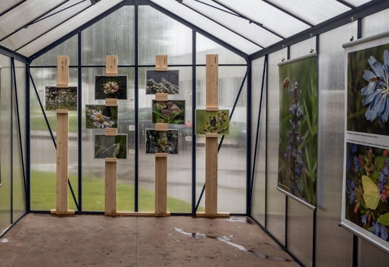 Blick in die Ausstellung Mehr Arten im Garten
