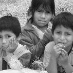 indiohilfe-benefitzkonzert