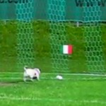 Puchheimer EM-Orakel sieht Italien im Halbfinale