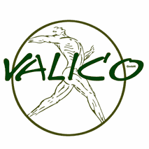 Gesundheitsdomizil VALICO GmbH